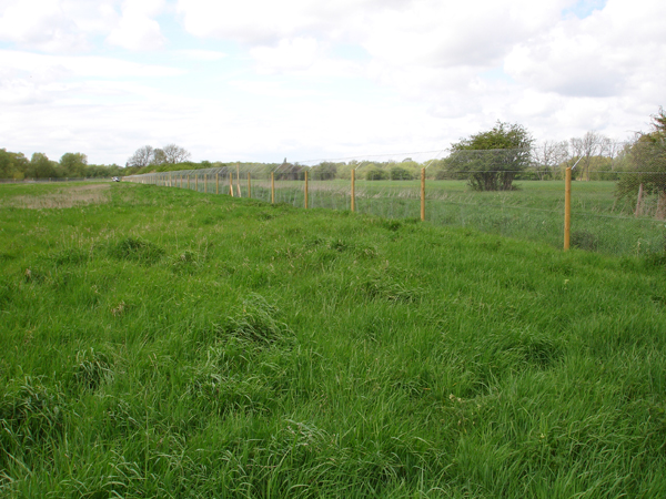 We're happy to tackle large otter fencing projects.