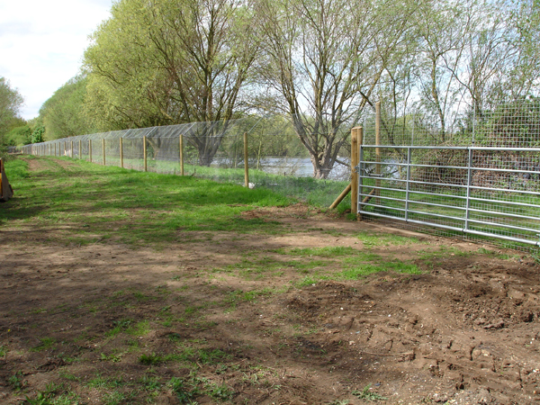 Our fencing can intergrate seamlessly with existing structures.