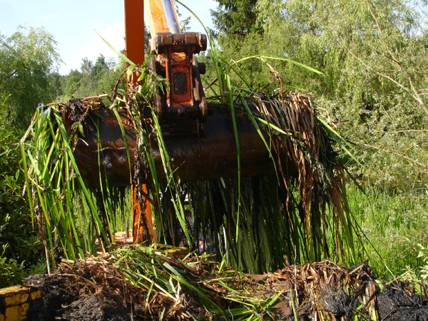 Excavated weeds are collected and disposed of safely and efficiently.